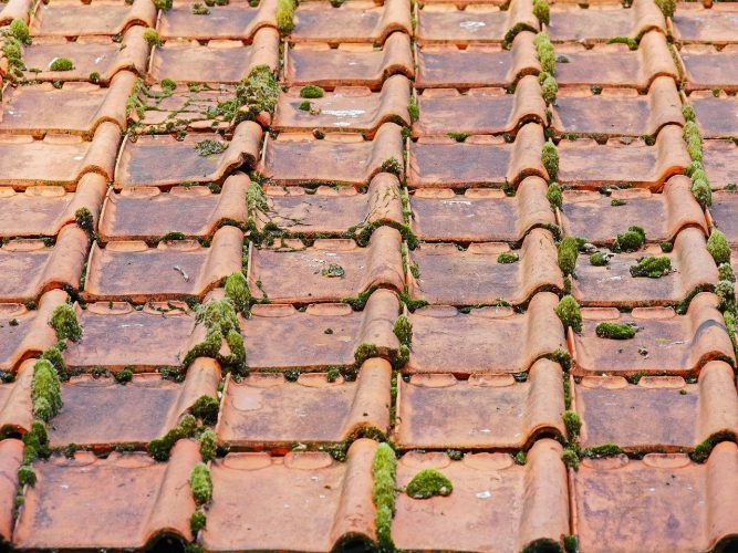 old roof 2703949 1280